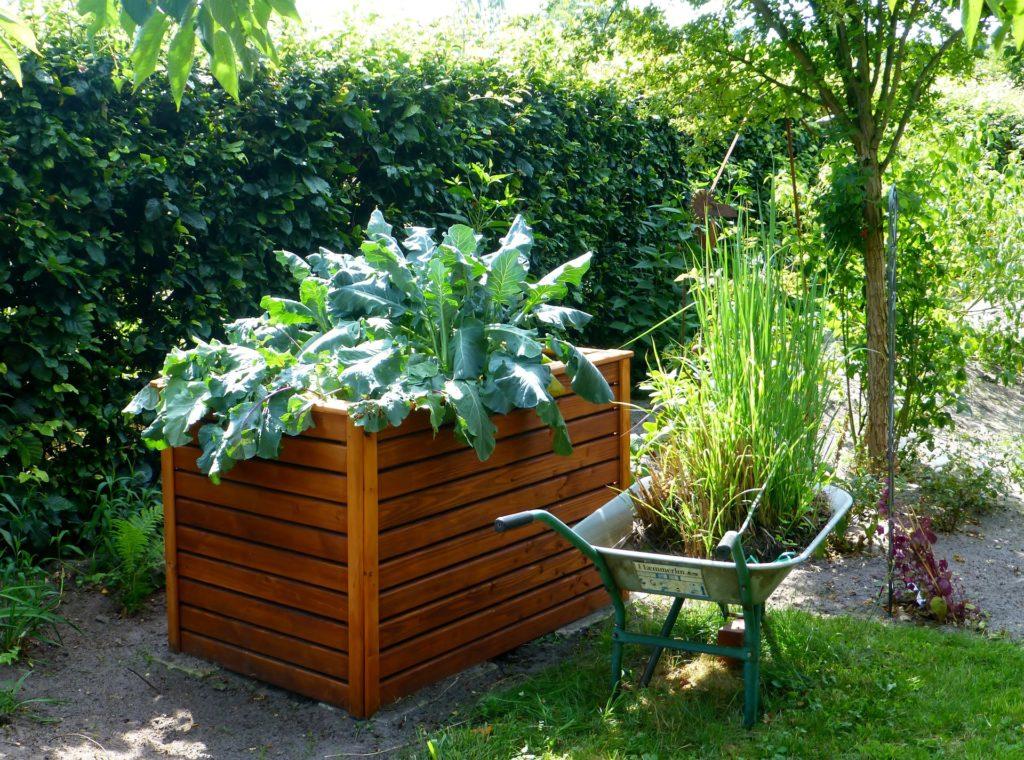 Gärtnern mit Hochbeeten